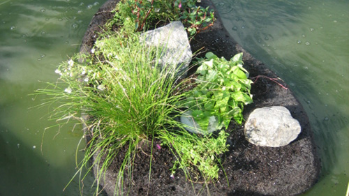 OxyIslands can be fitted with a wide variety of plants